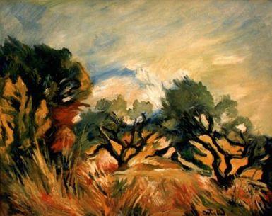 Champs d'oliviers en Provence (1953)
